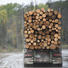 Logging truck with full load